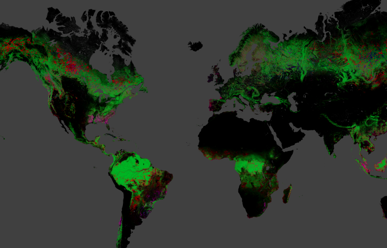 GIS Forest cover