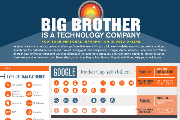 Big brother infographic
