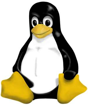 Tux - open source mascot