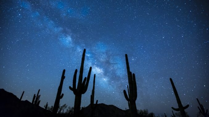 Free image - cactus and milky way
