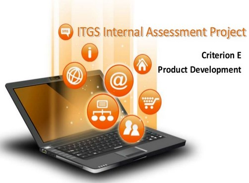 ITGS project criterion e